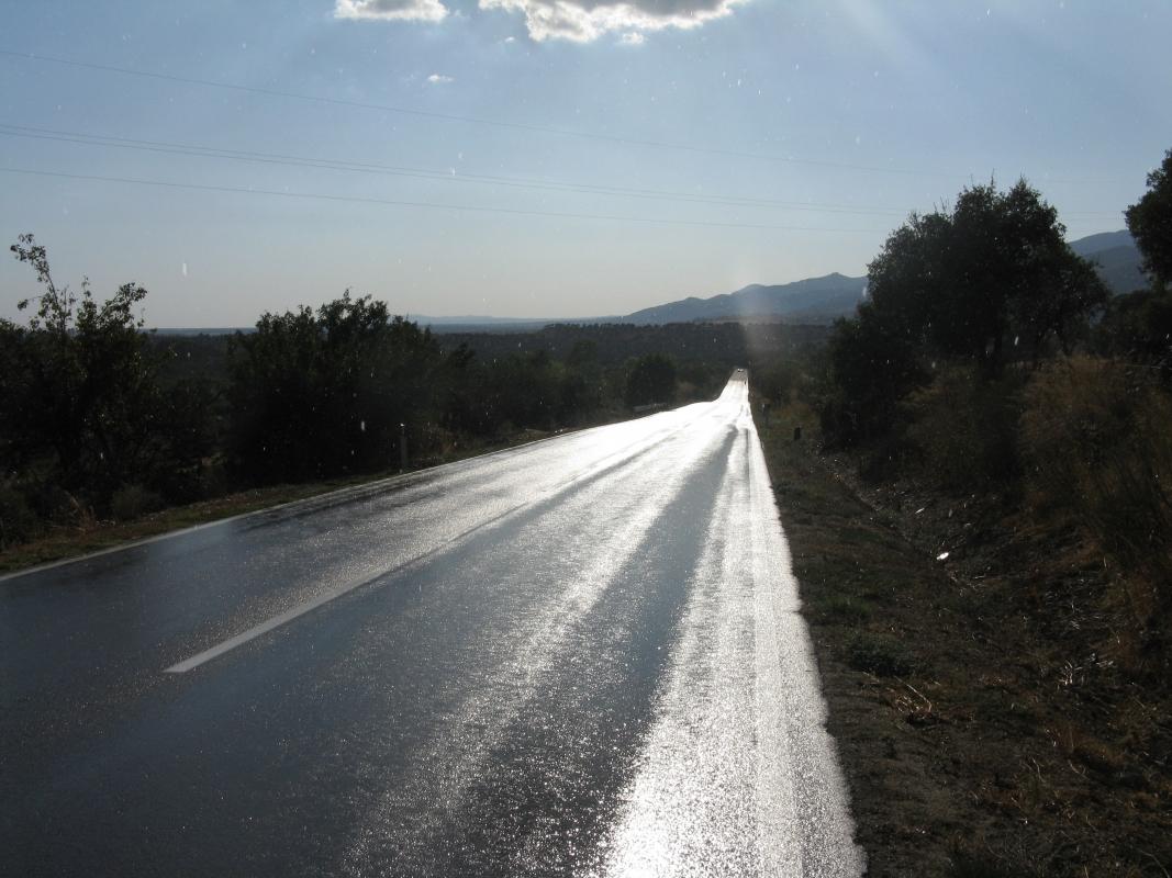 2011_Sardinka_023
