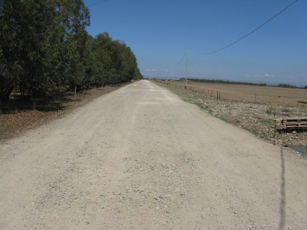 2011_Sardinka_043