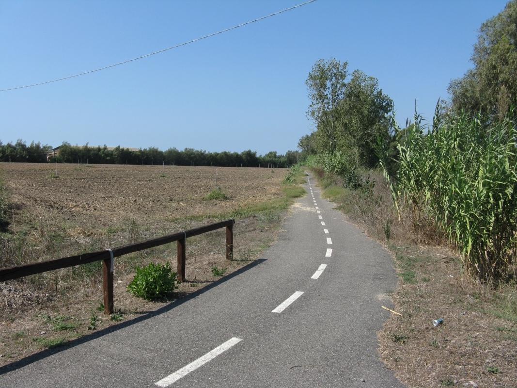 2011_Sardinka_066